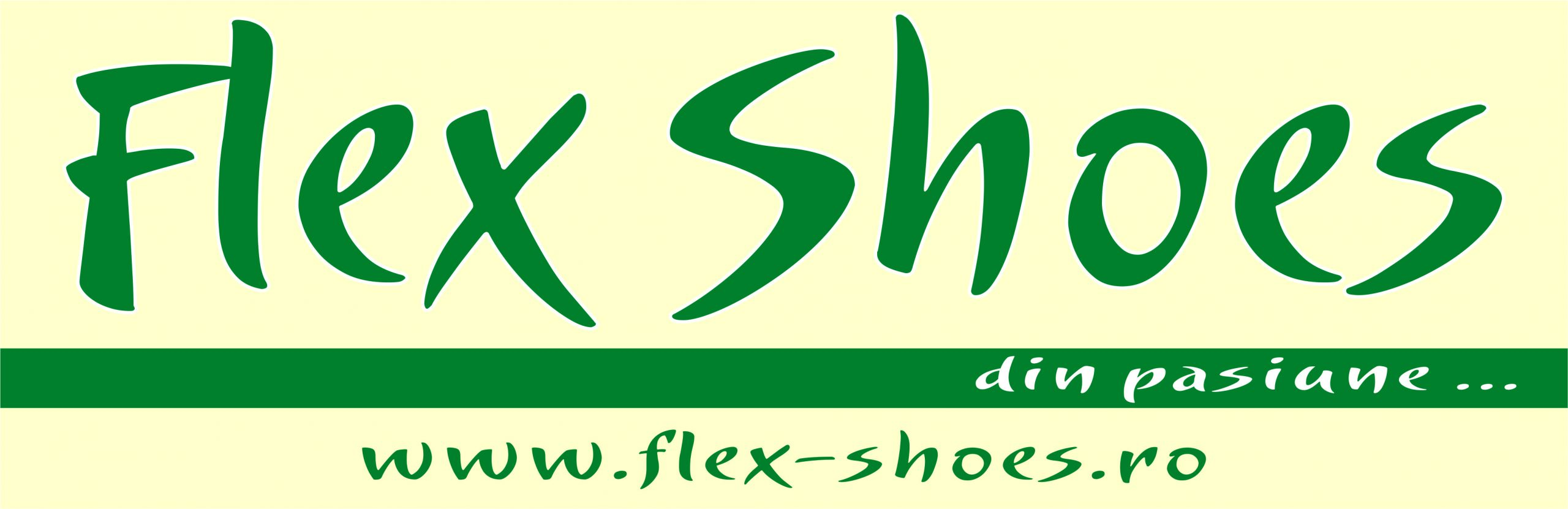 FLEX SHOES